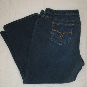 American Rag Plus jeans